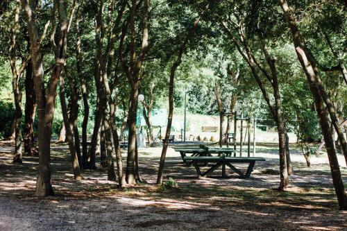 Camping Le Bois Fleuri, ArgelessurMer,Pyrenees  ~ Camping Le Bois Roland