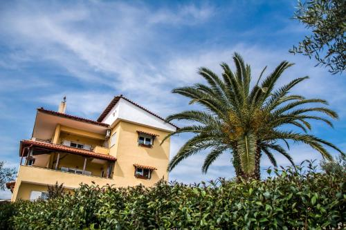 Big Summer House Halkidiki