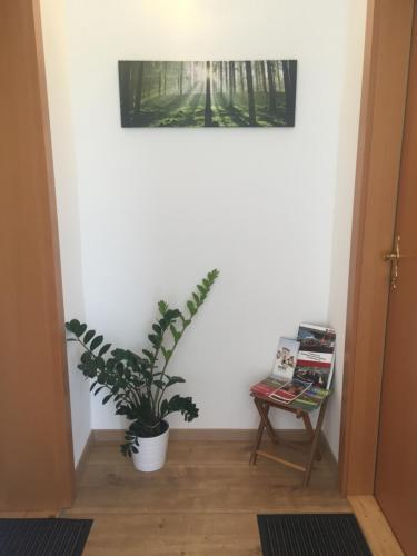 Roccos Raum