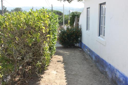 Отель Beach House Close to Sintra 0 звёзд Португалия