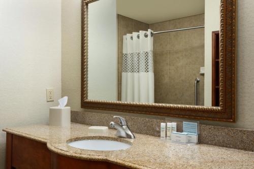 Hampton Inn & Suites Pharr Tx