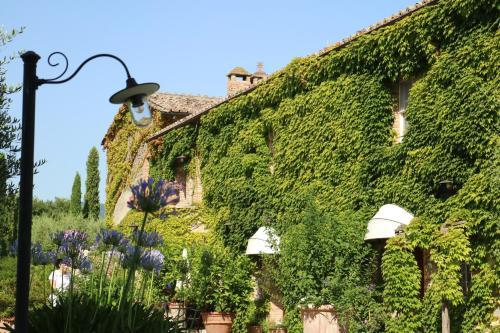 Отель Agriturismo La Sovana 0 звёзд Италия