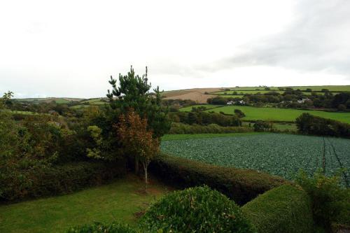 Hamlocks, Devon