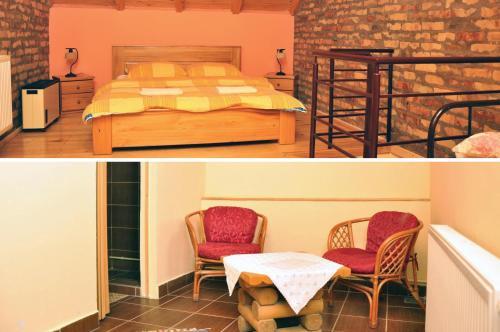 Guest house Pikec, Bezdan