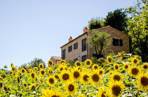 CasaVostra - Ambience Suites, Ostra Vetere