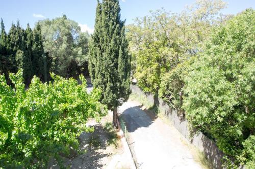 Les Vignes Du Cap Brun