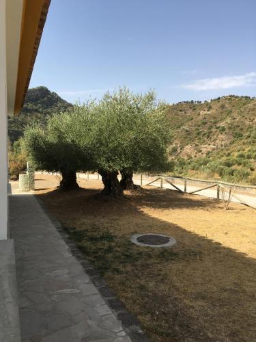 Casa Rural Estacion De Coripe
