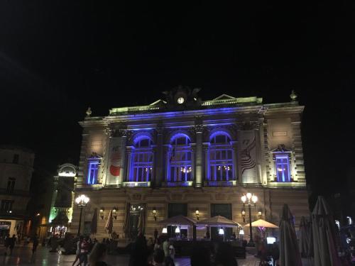 Sous Les Toits De Montpellier