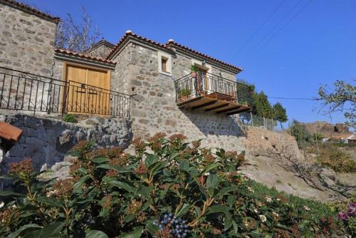 Villa Rodi