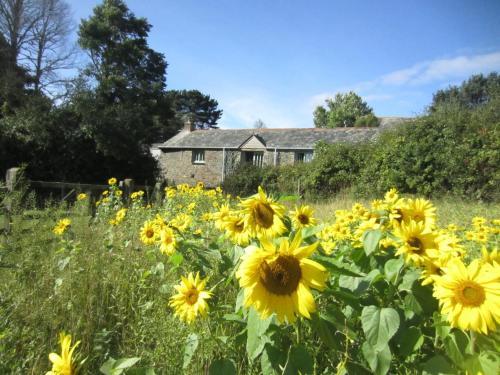 Trethella Farm Cottage