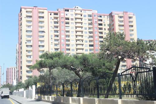 Апартаменты Шамси