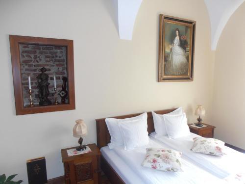 Отель Gothic House 0 звёзд Румыния