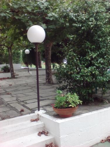 Hostal Restaurante Pinarejo 9