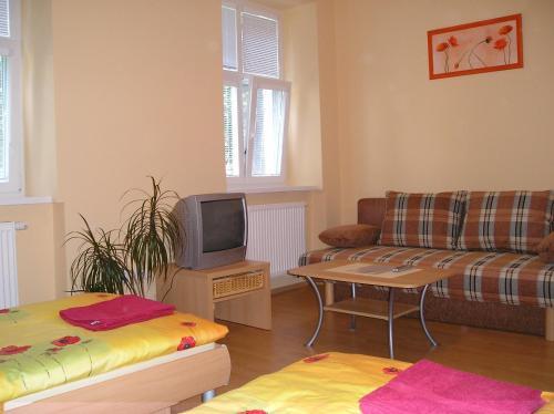 Apartment 2 lions