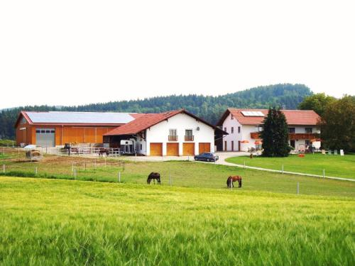 Reiterhof Hexental