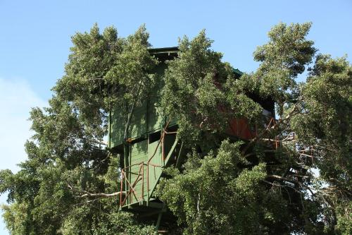 Отель Yala Luxury Tree House 3 звезды Шри-Ланка