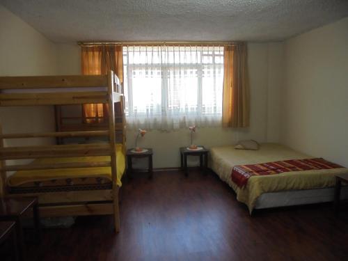 Chimborazo Photo 11