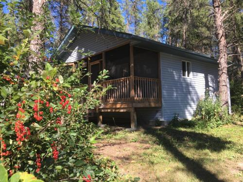 Bear Country Cottages