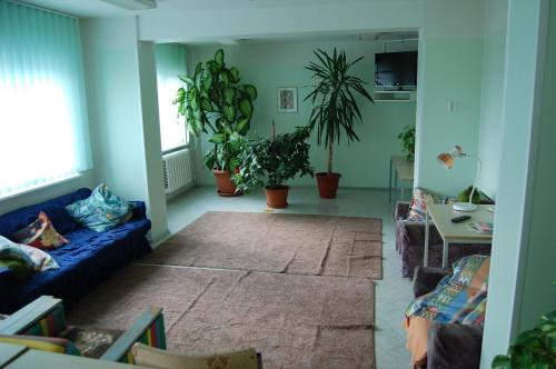 Seng i 4-sengs blandet sovesal (1 Person in 4-Bed Dormitory - Mixed)
