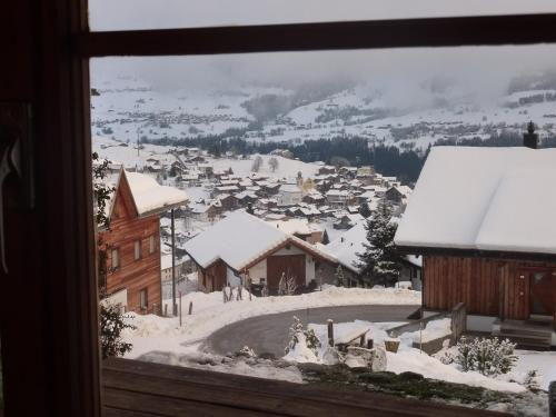 Arnika Montana, Brigels