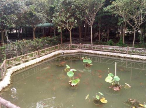 Xinsheng Inn, Dujiangyan