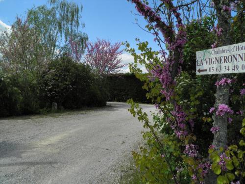 Chambres d'Hôtes La Vigneronne