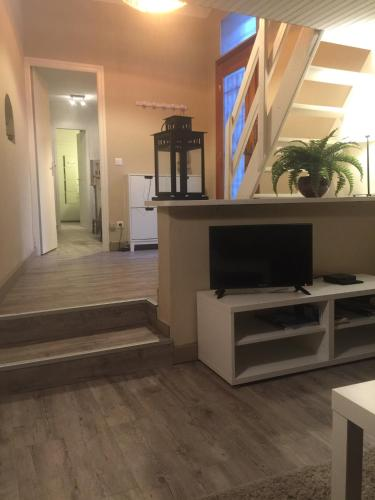 Appartement Louis Figuier