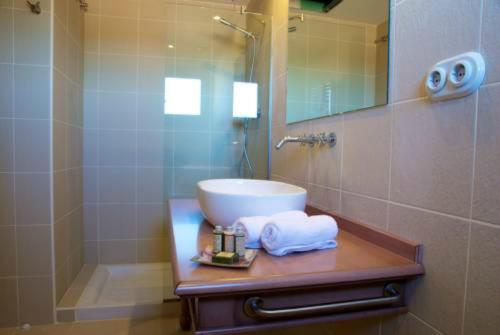Habitación Doble Deluxe - 1 o 2 camas - Uso individual Hotel Villa Monter 17