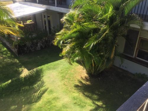 Almond Tree Hotel Resort, Corozal