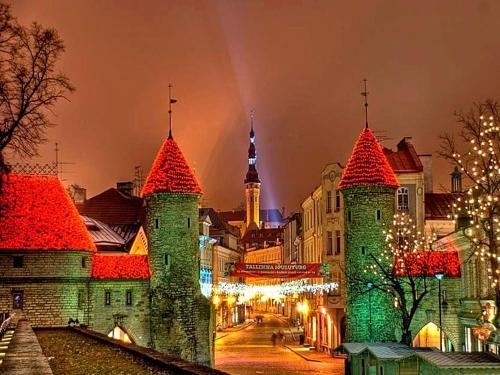 Park Apartment Tallinn, 塔林