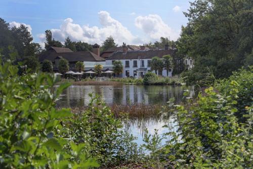 Best Western Frensham Pond Hotel hotel in Farnham