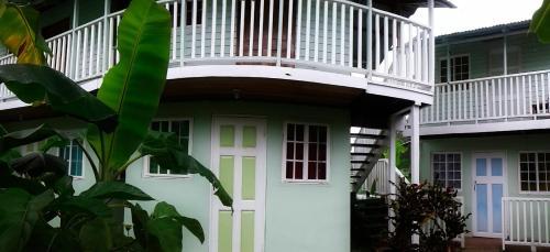 HotelMareiguana Hostel