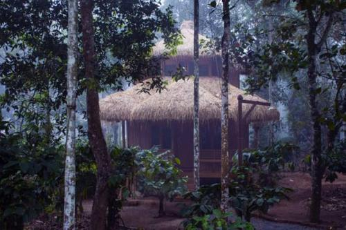 Wayanad Coffee Mist Resort
