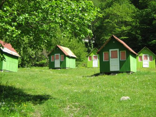 Camping Bor