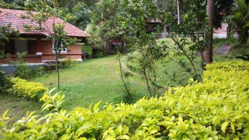 Treetop Resort