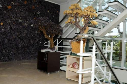 Hotel Das Pedras