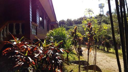Huaykrai resort