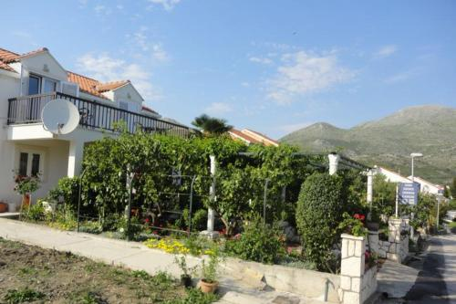 Guest House Pavkovic