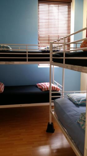 8床混合宿舍間的1張床位 (Bed in 8-Bed Mixed Dormitory Room)