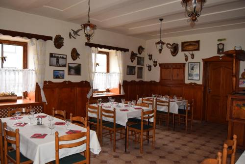 Penzion Borovnice