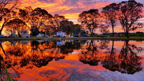 Coonawarra Bush Holiday Park