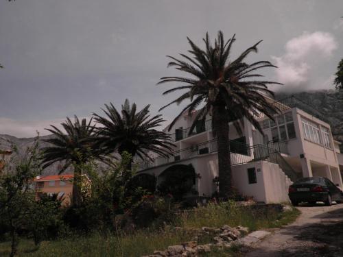Apartments Tri Palme