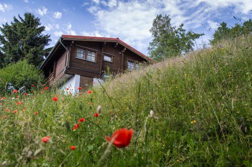 Werrapark Resort Ferienhausanlage Am Sommerberg