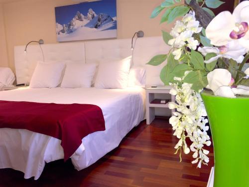 Habitación Doble con acceso al spa - 1 o 2 camas Hotel Del Lago 1