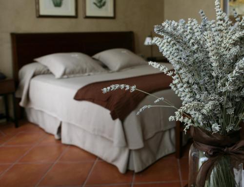 Habitación Doble - 1 o 2 camas Bremon 2