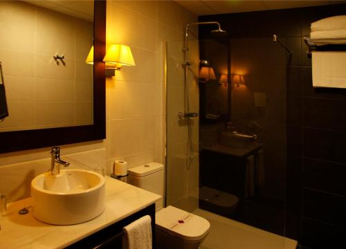 Standard Double or Twin Room - single occupancy Hotel Spa Martín el Humano 4