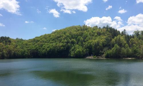 Wolf Creek Lake Cabin - Pineview