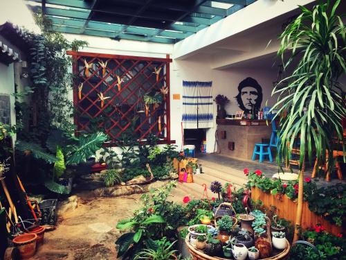 Pet-friendly Hostels Dali