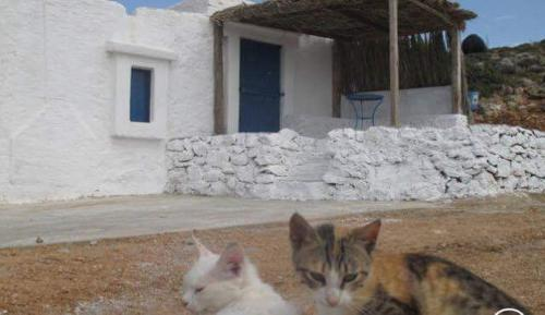 Sitarena Cottage