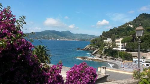 Hotels near bagni punta stella zoagli best hotel rates near